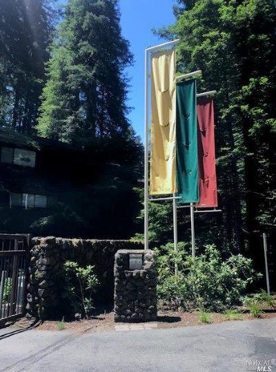 Guerneville CA Condo/Townhouse For Sale: $359,900