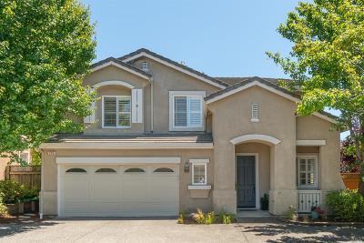 Petaluma Single Family Home For Sale: 246 Windsor Drive