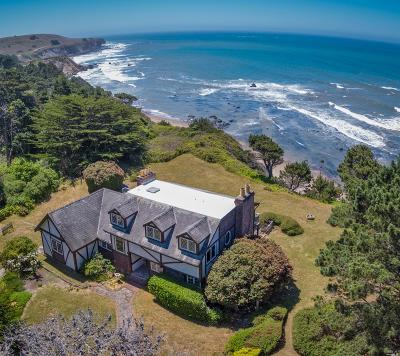Point Arena Single Family Home For Sale: 28200 South Highway 1