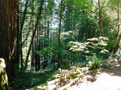 Guerneville Residential Lots & Land For Sale: 116 Highway
