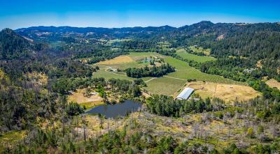 Calistoga Residential Lots & Land For Sale: 9000 Franz Valley Road