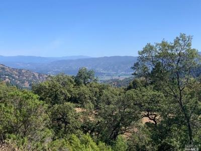 Ukiah Residential Lots & Land For Sale: 5900 Long Valley Ranch Road
