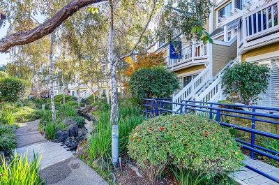 Benicia Condo/Townhouse For Sale: 284 East 2nd Street