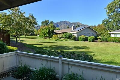 Sonoma County, Marin County, Mendocino County, Lake County, Napa County Single Family Home For Sale: 330 Twin Lakes Drive