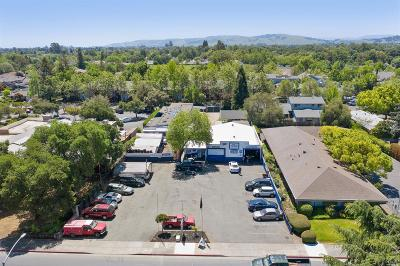 Sonoma County Commercial For Sale: 801 West Napa Street