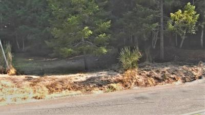 Willits Residential Lots & Land For Sale: 26060 Poppy Drive