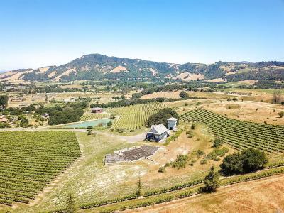 Santa Rosa Single Family Home For Sale: 200 Bottasso Court