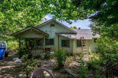 Sebastopol Single Family Home For Sale: 1095 Gold Ridge Road
