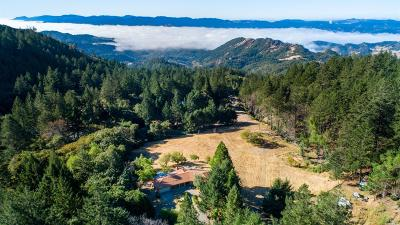 Calistoga Single Family Home For Sale: 4611 Lake County Highway