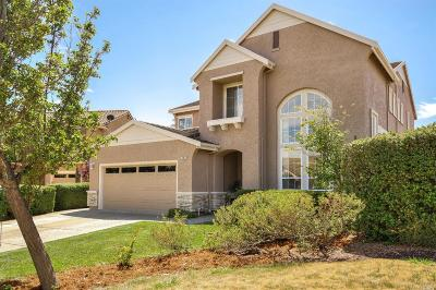 Solano County Single Family Home For Sale: 2907 Carlingford Lane