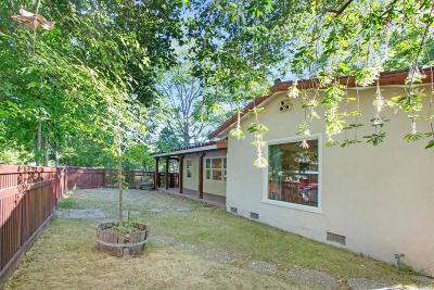 Calistoga Single Family Home For Sale: 1231 Stevenson Street