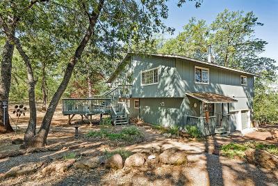Lower Lake Single Family Home For Sale: 18450 Ponderosa Trail