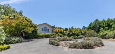 Sebastopol, Graton, Occidental Single Family Home For Sale: 324 Sparkes Road