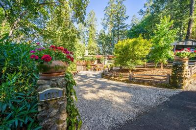 Calistoga Single Family Home For Sale: 1327 Firview Drive