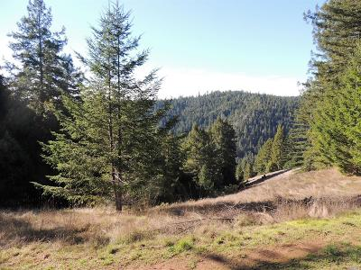Mendocino County Single Family Home For Sale: 1921 Charoliase Drive