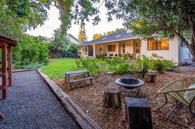 Calistoga Single Family Home For Sale: 1703 Maggie Avenue