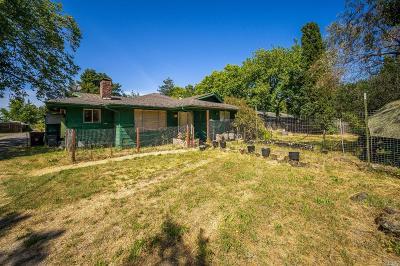 Santa Rosa Single Family Home For Sale: 863 Butler Avenue
