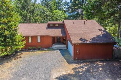 Willits Single Family Home For Sale: 16250 Bluejay Lane