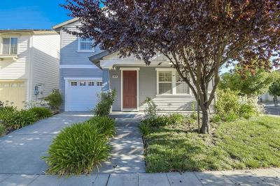 Santa Rosa Single Family Home For Sale: 4009 New Zealand Avenue