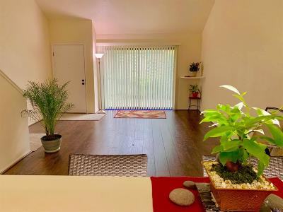 Sonoma County Condo/Townhouse For Sale: 535 Norlee Street