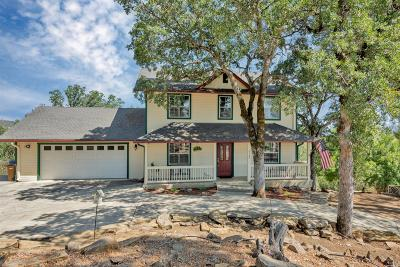 Hidden Valley Lake Single Family Home For Sale: 17160 Knollview Drive