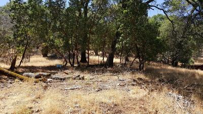 Napa Residential Lots & Land For Sale: Juniper Drive