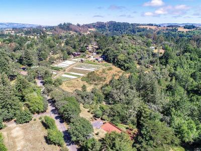 Sebastopol CA Single Family Home For Sale: $795,000