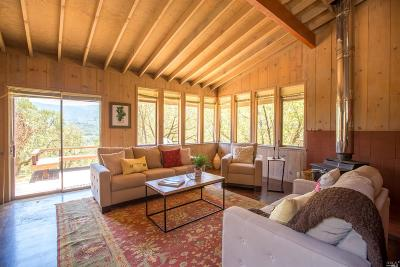 Glen Ellen Single Family Home For Sale: 3388 Warm Springs Road