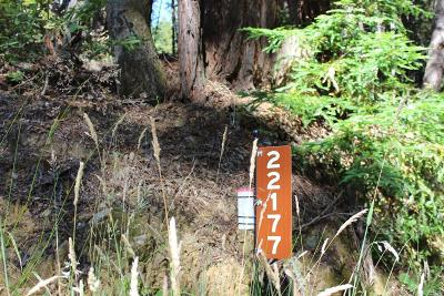 Timber Cove Residential Lots & Land For Sale: 22177 Umland Circle
