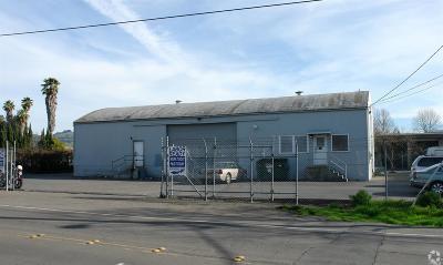 Santa Rosa CA Commercial For Sale: $1,150,000