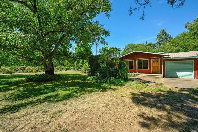 Lakeport Single Family Home For Sale: 1710 Argonaut Road