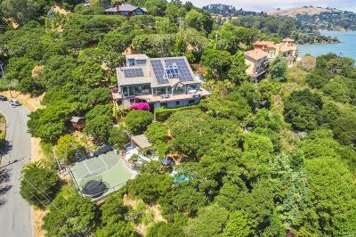 Marin County Single Family Home For Sale: 3668 Paradise Drive