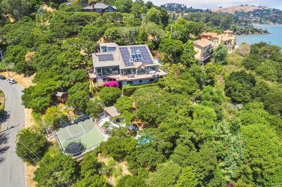 Tiburon Single Family Home For Sale: 3668 Paradise Drive