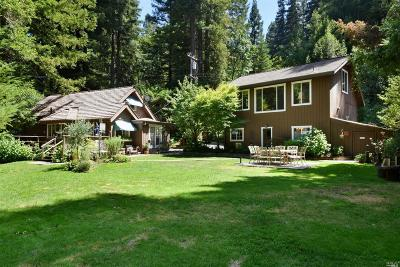 Healdsburg Single Family Home For Sale: 4011 Mill Creek Road