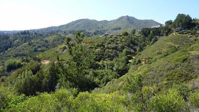 Marin County Residential Lots & Land For Sale: 153 Myrtle Avenue