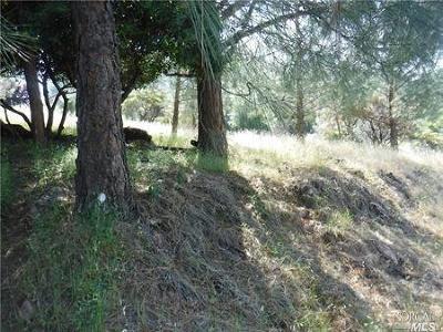 Kelseyville Residential Lots & Land For Sale: 10266 Hok Has Ha Lane