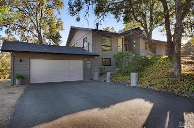 Santa Rosa Single Family Home For Sale: 10133 Loch Haven Drive