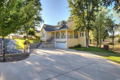 Lakeport Single Family Home For Sale: 950 Oak Park Way