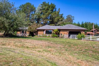 Petaluma Single Family Home For Sale: 903 Eastman Lane