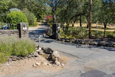 Sonoma Single Family Home For Sale: 130 Cavedale Road