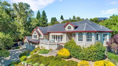 Healdsburg Single Family Home For Sale: 128 Village Oaks Court