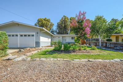 Petaluma Single Family Home For Sale: 69 Arlington Drive