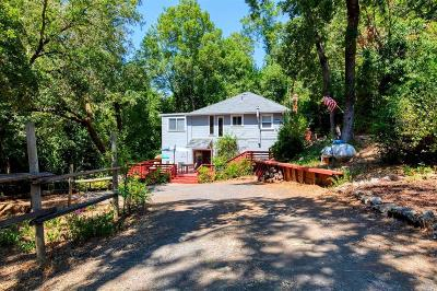 Guerneville, Monte Rio, Cazadero, Forestville Single Family Home For Sale: 10838 Rio Vista Road