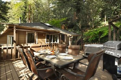 Guerneville Single Family Home For Sale: 16625 Neeley Road