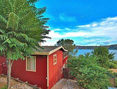 Clearlake Oaks Single Family Home For Sale: 11633 Lakeview Drive