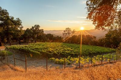 Napa County Residential Lots & Land For Sale: Hennessey Ridge Road