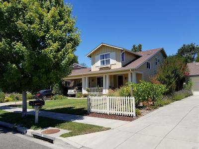 Sonoma Single Family Home For Sale: 384 Brockman Lane