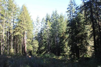 Fort Bragg Residential Lots & Land For Sale: 27610 Highway 20