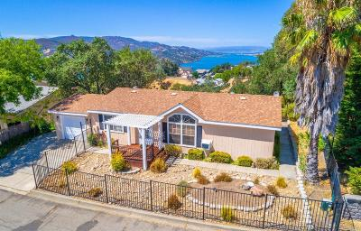 Napa Single Family Home For Sale: 208 Manzanita Lane