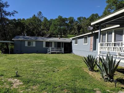 Napa Single Family Home For Sale: 9445 Steele Canyon Road